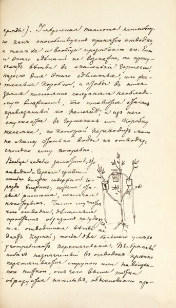 Шварц, П. [Конволют из 2 книг] Краткое, ясное и подробное руководство к содержанию и разведению лучших цветных кустов и растений. + Продолжение к руководству. М., 1821, 1828.